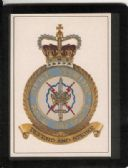 ROYAL AIR FORCE STRIKE COMMAND MOUSEMAT